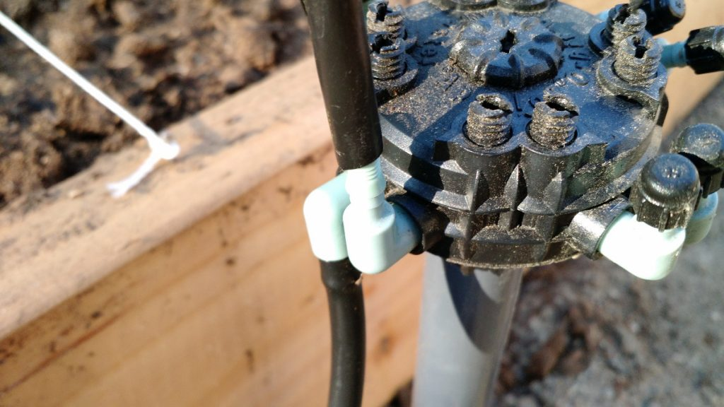 Drip irrigation tubing connected to drip manifold